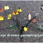 """""""Moje drzewo genealogiczne"""" – konkurs z nagrodami z okazji rocznicy urodzin Zofii Nałkowskiej."""